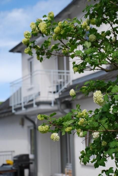 Balkon der Fewo Bratenhöfchen