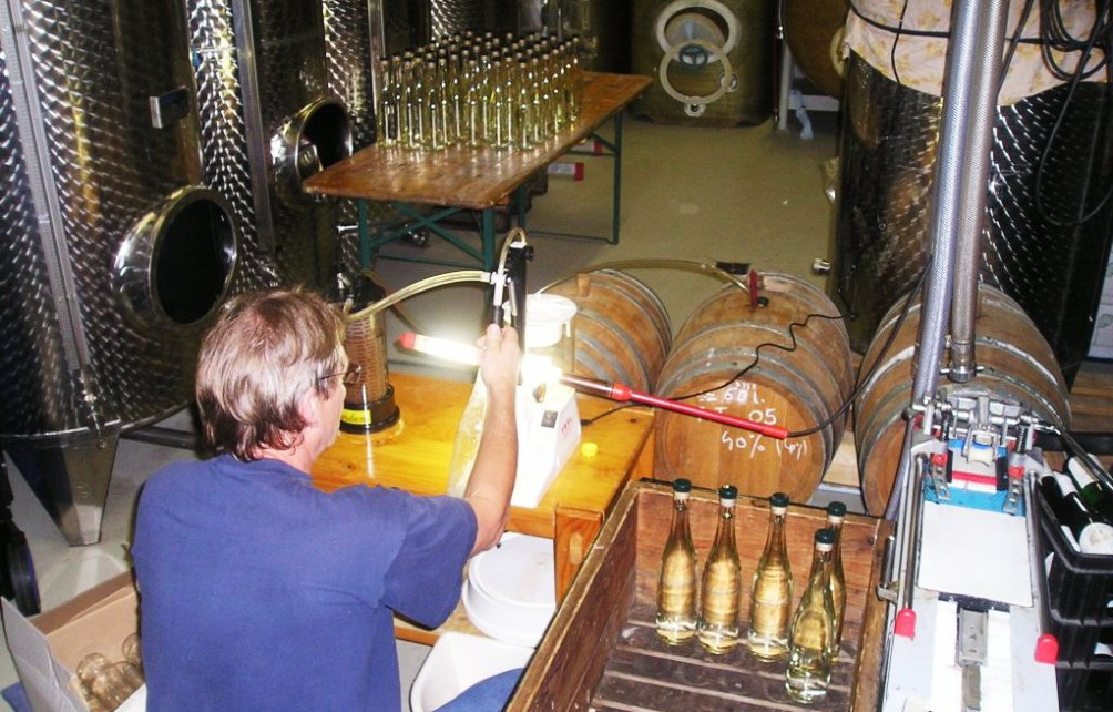 keller-2 Weinkeller Weingut Roussel in Andel an der Mosel